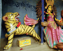 The Goddess and the Tiger
