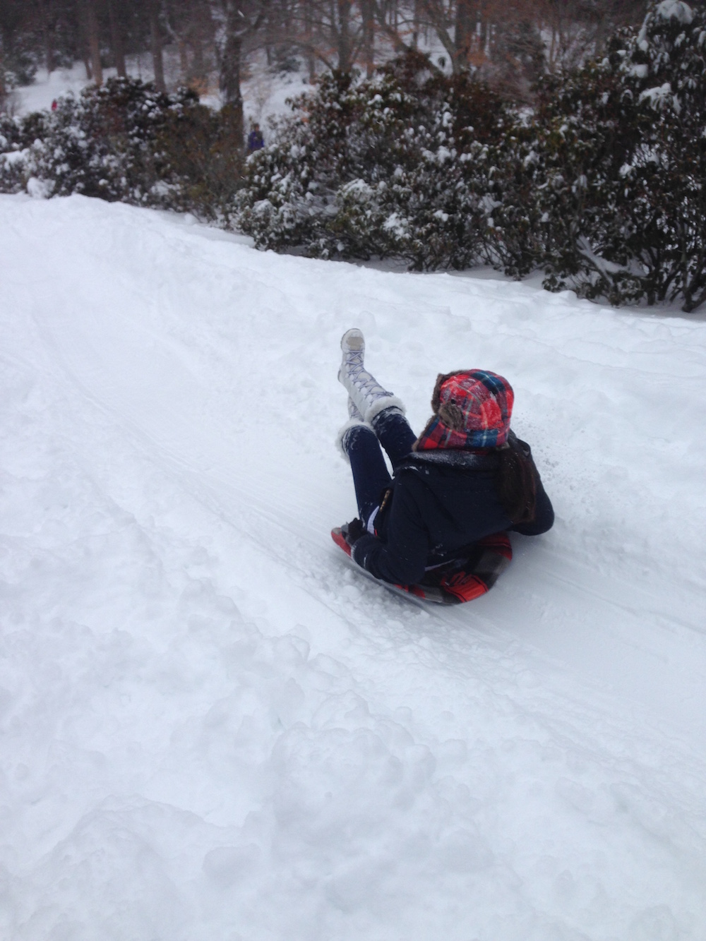 A student sleds down a hill in the snow