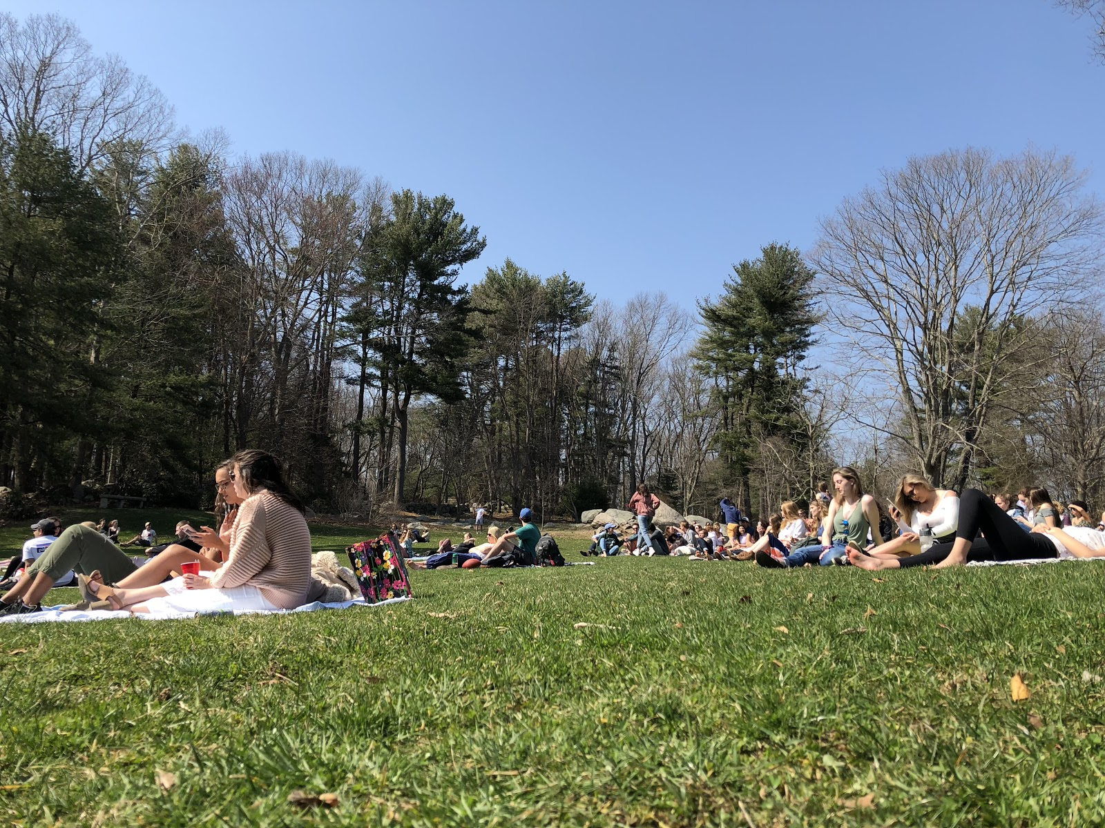 Students lay out on blankets in the Arboretum to listen to music at Arbofest