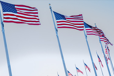 Image of American flags blowing in wind