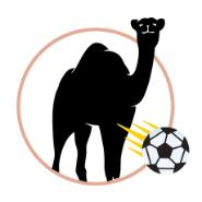 Camel with soccer ball