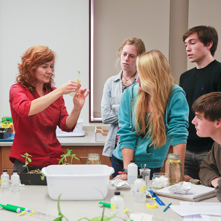 Botany professor Rachel Spicer (left) participates in student-faculty research, a major component of the Richard H. Goodwin Environmental Fund.