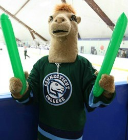 Camel Mascot at Green Dot Hockey Game