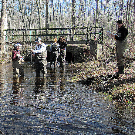 Students collect water samples at Pendleton Hill Brook in Connecticut as part of Physics, Astronomy and Geophysics Professor Doug Thompson's