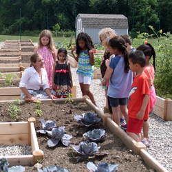 Zoe Madden '12 (in white), director of coordinated school health for Norwich Public Schools, works with children in the new garden at their school.
