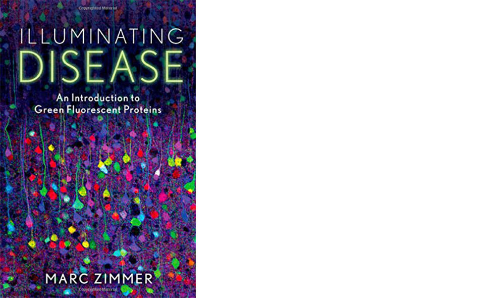 Illuminating Disease by Marc Zimmer