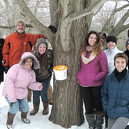 maple syrup tapping class in the Connecticut College Arboretum