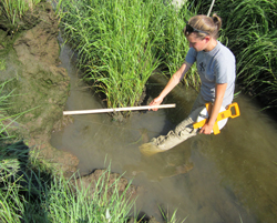 Clara Chaisson '12 measures slumped areas of marsh