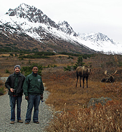 James O'Connor '13 (left) and William Tarimo '12 encounter moose on a hike through the Alaskan wilderness with professor Gary Parker.