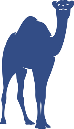 Connecticut College's official camel, above, will be redesigned by Ohio-based Rickabaugh Graphics, with input from students, alumni and members of the Connecticut College community