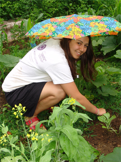 Natalie Theys ´11 weeds the Sprout! organic garden under cover of an umbrella.
