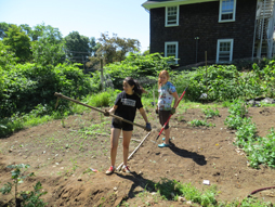 Azul Tellez '15 and Zoe Lynch '15 maintain the current Sprout garden (above) while helping establish the new one.