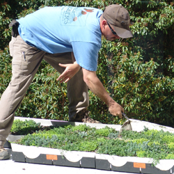 An employee of Prides Corner Farms in Lebanon, Conn., installs the green roof on Cro-Bar.