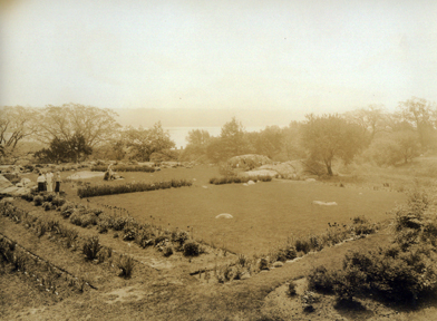 The Caroline Black Garden in the 1930s.