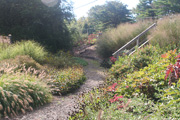 Entry path in the Caroline Black Garden.